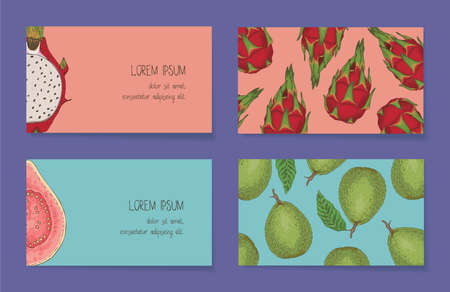 Fruit Business Cards Template Collection On a Violet Background. Guava, Dragon Fruit. Front Side and Back Side
