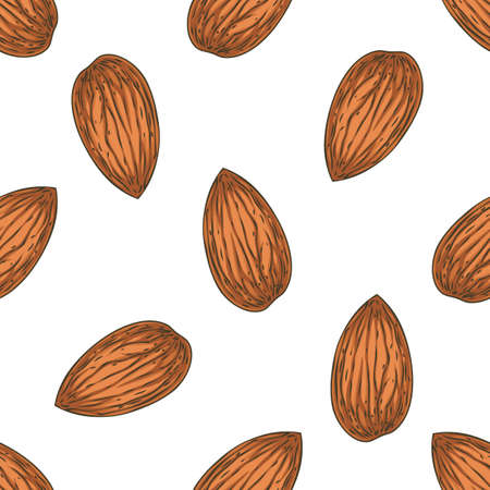 Seamless Pattern with Shelled Almond Isolated on a White Background Stock Photo