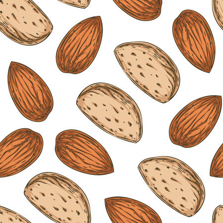 Seamless Pattern with Shelled and Unshelled Almond Isolated on a White Background