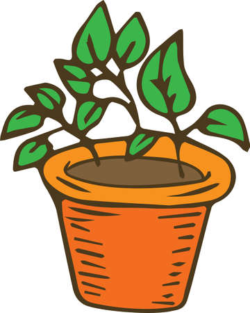 Potting Flower in Brown Clay Pot Stock Photo