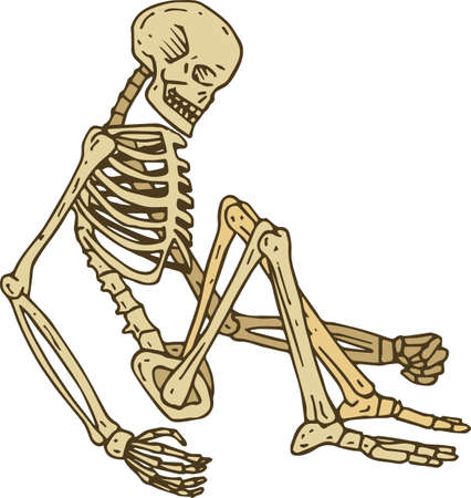 Sitting Human Skeleton. Isolated on White. Hand Drawn Illustration