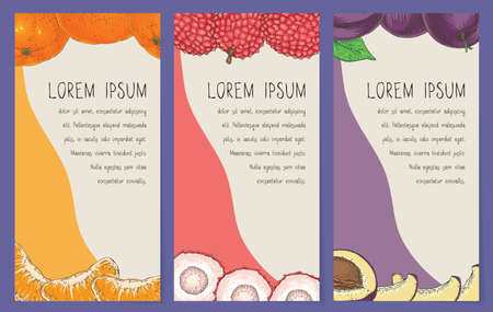 Fruit Cards or Banners Template Collection Illustration