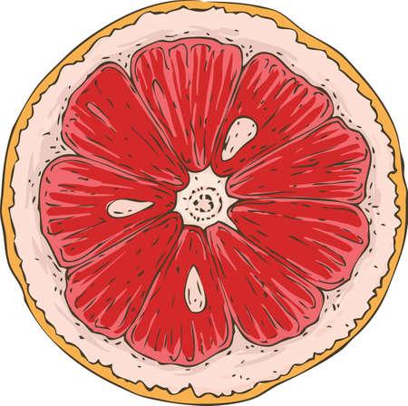 Isolated Grapefruit Slice