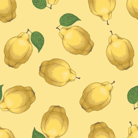 Seamless Pattern with Quince 版權商用圖片 - 153940367