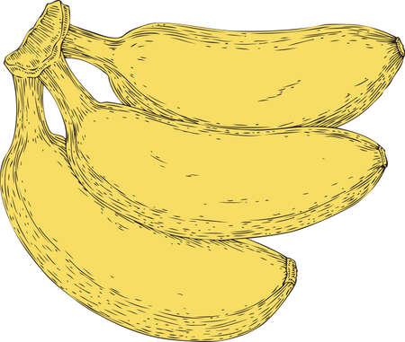 Three Ripe Yellow Bananas