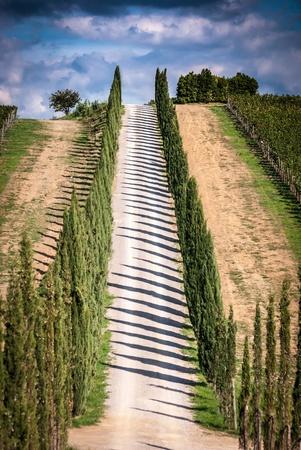 Vista del pintoresco paisaje de Toscana con el camino y callej�n cipr�s, regi�n de Chianti, Toscana, Italia Foto de archivo