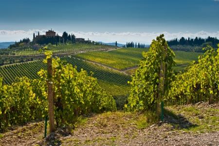 Toscaanse landschap met wijn werf in voorgrond