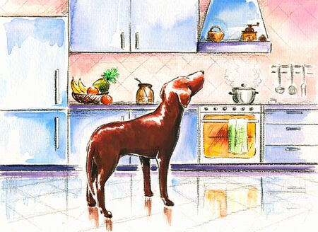 Brown dog in kitchen Picture created with watercolors  photo