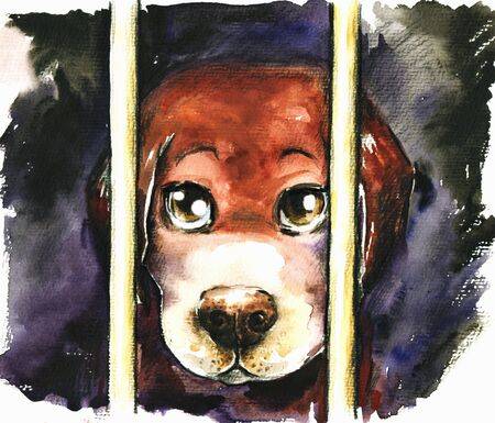 alone boy: A sad dog in an animal shelter waiting for adoption Watercolors  Stock Photo