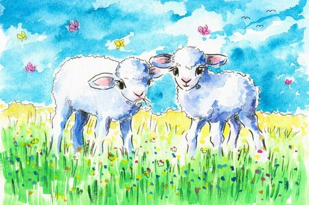 fleecy: Two cute lambs on summer field Picture created with watercolors
