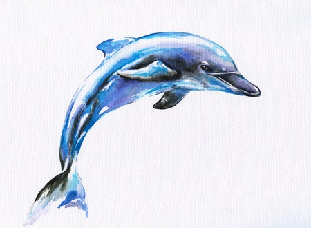 Jumping blue dolphin Picture I have created with watercolors  版權商用圖片