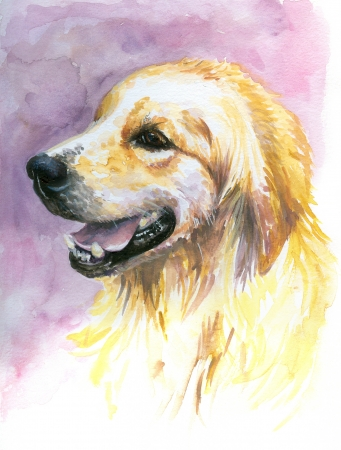 painted image: Portrait of sweet ,young labrador watercolor painted