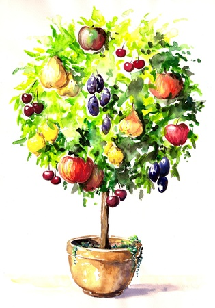 Hand-painted colorful tree with different fruits in pot  Picture created  with watercolors