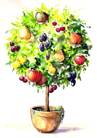Pintado a mano del �rbol de colores con diferentes frutas en una olla imagen creada con las acuarelas Foto de archivo