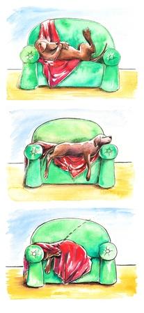 lie: Brown labrador retriever dog lie on green sofa Watercolors