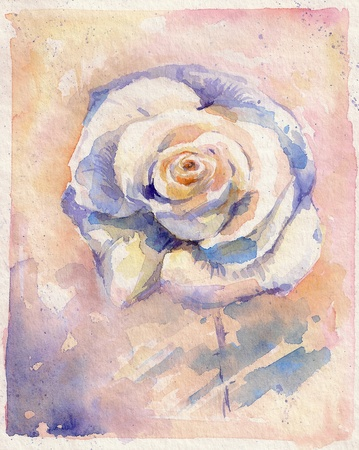 Single beautiful rose watercolor painted   photo