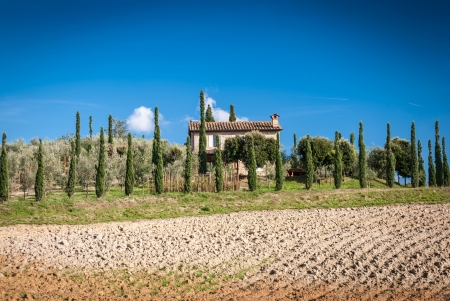Tuscany landscape with farm in background,Chianti region, Tuscany, Italy Stock Photo - 20264269