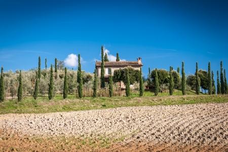 Tuscany landscape with farm in background,Chianti region, Tuscany, Italy Stock Photo - 20264269