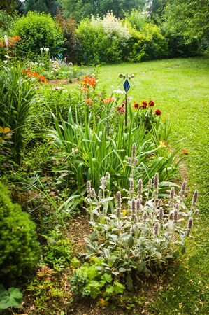 Colorful flowers beds and green lawn in summer garden Stock Photo