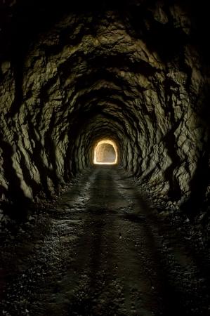 dode bladeren: Licht aan het eind van de tunnel Traunstein, Stiermarken, Oostenrijk Stockfoto