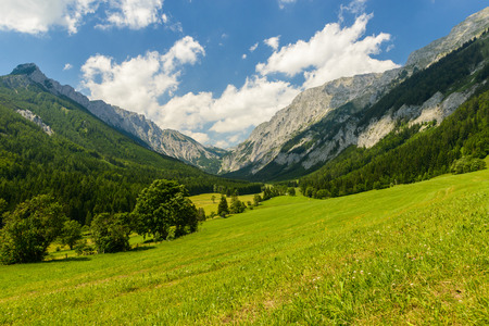 Summer landscape with fields and mountains-Valley Seewiesen,Styria,Austria   Stock Photo