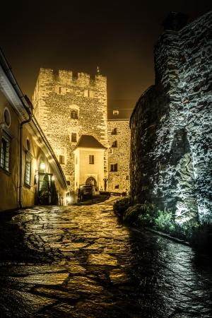 burg: Burg in Deutschlandsberg at night Styria,Austria