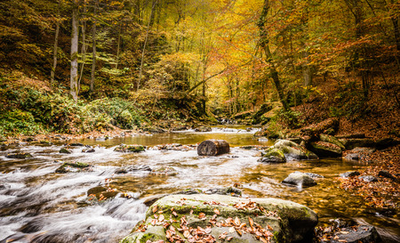 steiermark: Beautiful river with cascades in autumn forest Deutschlandsberg,Austria