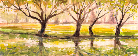 Landscape with old trees in park Picture created with watercolors  photo