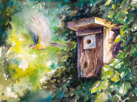 Blue tit flying out of birdhouse Picture created with watercolors  photo