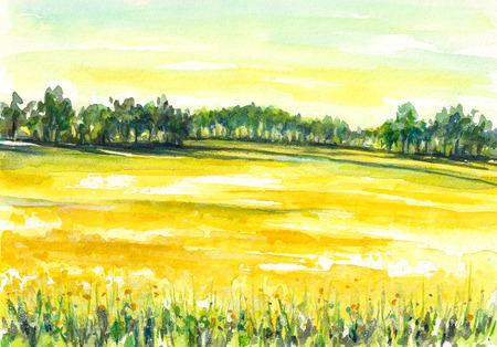 Illustration of rural landscape with rapeseed field Picture created with watercolors  illustration
