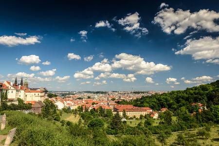 gothic castle: Vista del castillo g�tico de Praga, la ciudad y los �rboles en primer plano Foto de archivo