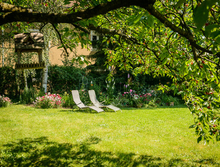 Summer garden with flowers and deckchair on the lawn under cherry tree
