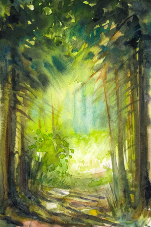 gaudy: Pathway in summer forest Picture created with watercolors