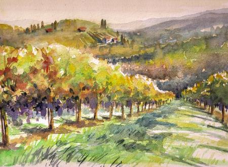 ブドウ畑の風景です。画像の水彩画を作成しました。
