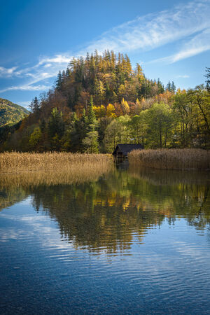 Landscape with forset lake in fall.Leopoldsteiner see,Styria,Austria. photo