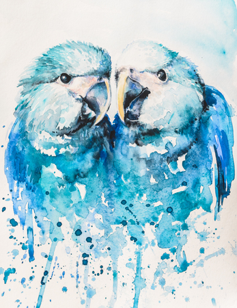 conservancy: Watercollors illustration of Spix macaw Cyanopsitta spixii also known as the little blue macaw.