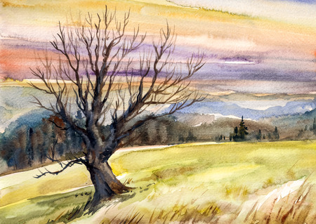 article: Watercolor illustration of autumn landscape with tree in mountains at sunset. Stock Photo
