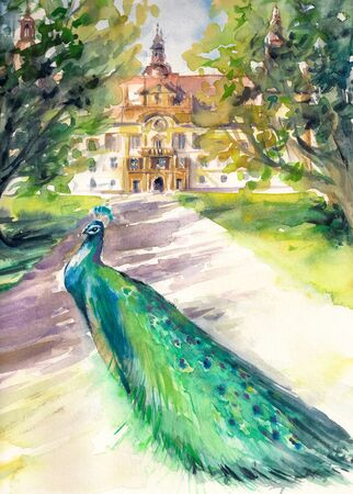 steiermark: Watercolor illustration of a peacock in park and front facade of the Eggenberg castle in Graz, Styria, Austria