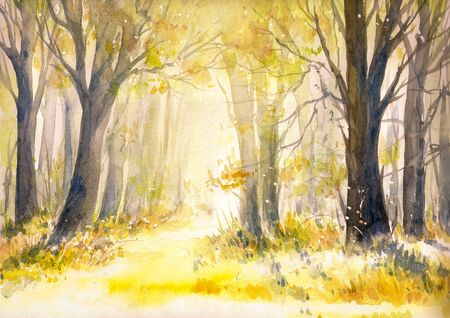 yellow trees: Sunny summer forest.Picture created with watercolors.
