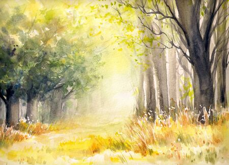 picturesque: Sunny summer forest.Picture created with watercolors.