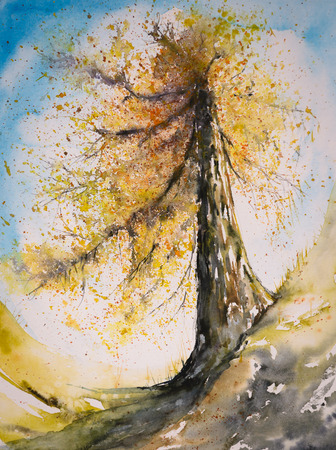 sky brunch: Watercolor painted illustration of larch tree in autumn colors.