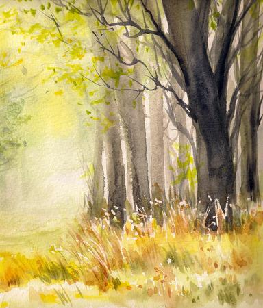 Bäume im Herbst forset.Picture mit Aquarellen geschaffen.