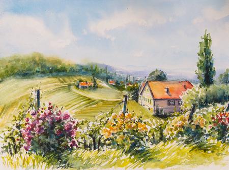 Landschap met sommer wijngaarden en rozen struiken in Zuid-Stiermarken, Oostenrijk. Foto gemaakt met aquarellen.