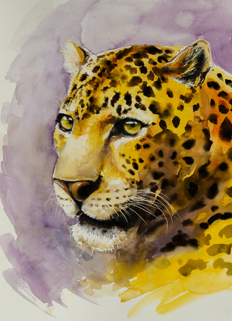 felidae: Portrait of Jaguar (Panthera onca). Picture created with watercolors.
