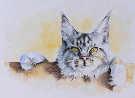 メインクーンの肖像画。画像水彩絵の具で作成しました。