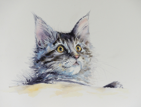 Young cute Maine Coon portrait. Picture created with watercolors. Stock Photo - 92214426