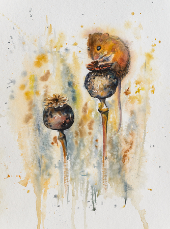 Mouse sitting on poppy heads. Picture created with watercolors.