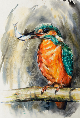 Common Kingfisher with small fish painted with watercolor. Bird illustration.
