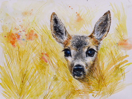 Close up of red deer female looking. Picture creating with watercolors. Stock Photo