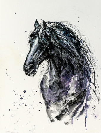 Decorative portrait of beautiful Friesian horse with long mane in black color on white background.Picture created with watercolors.